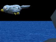 night flying birds