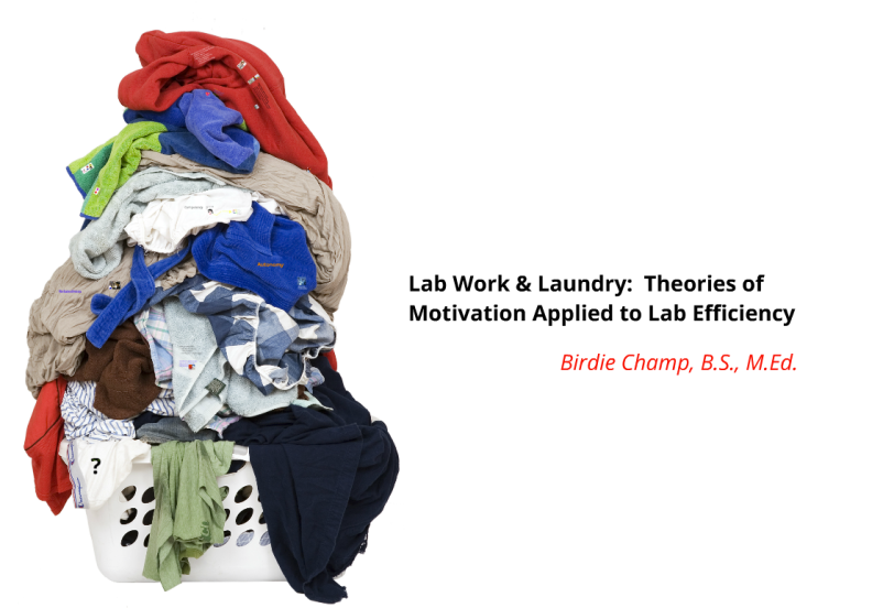 Lab Work AndLaundry