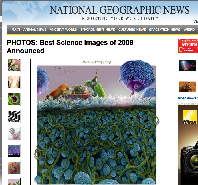 My artwork made news in the National Geographic11.52.41 AM